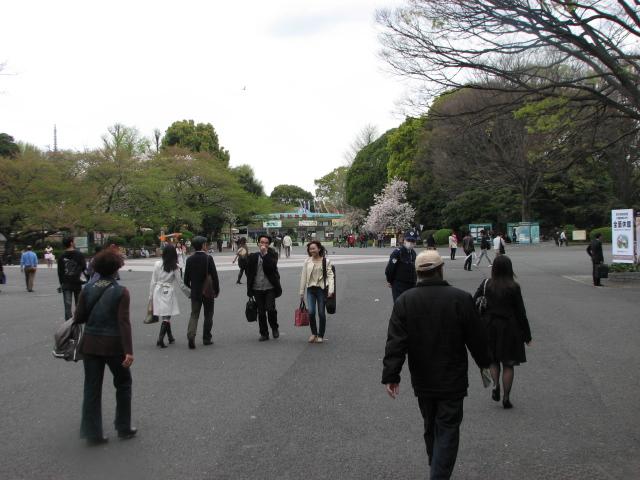 東京旅行_b0158721_216558.jpg