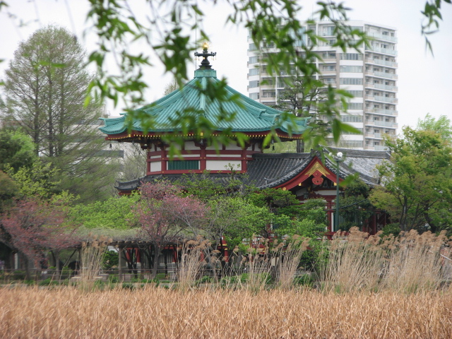 東京旅行_b0158721_217166.jpg