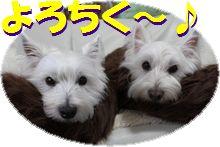 f0084422_004946.jpg