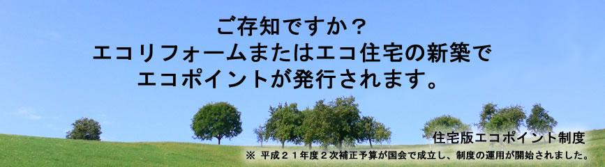 c0138868_7593871.jpg