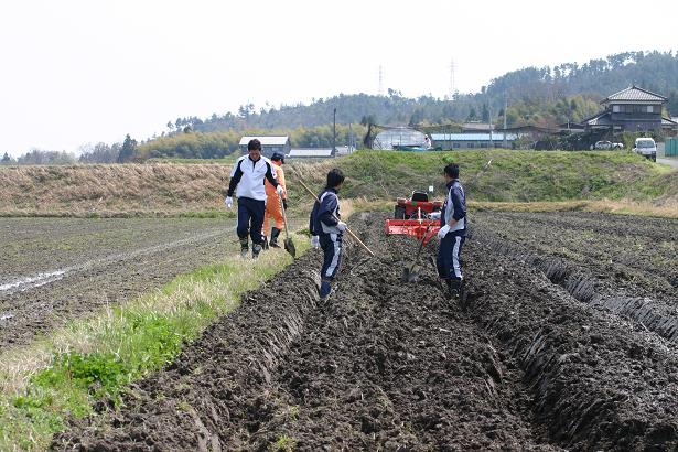 OBC農園_b0105369_11241318.jpg