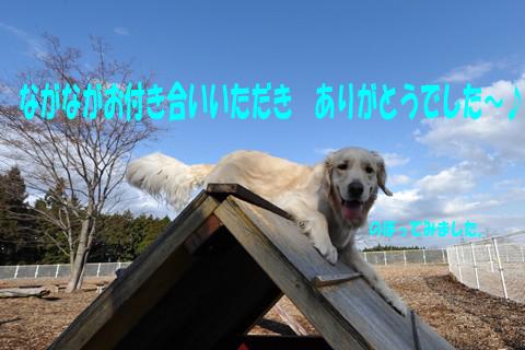 d0043478_1203647.jpg