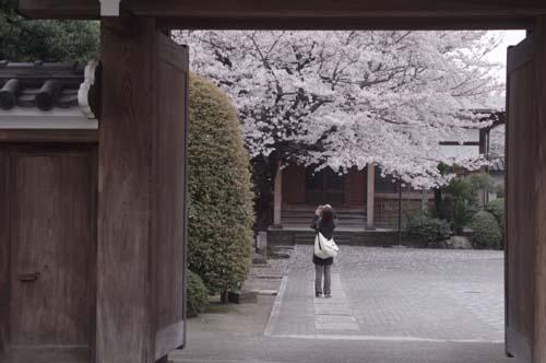 品川宿で見たこと_f0211178_18111611.jpg