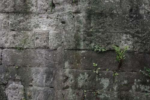 品川宿で見たこと_f0211178_18112465.jpg