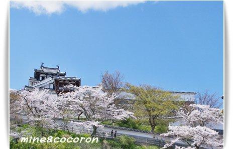 福知山城と三段池公園_a0053987_100552.jpg