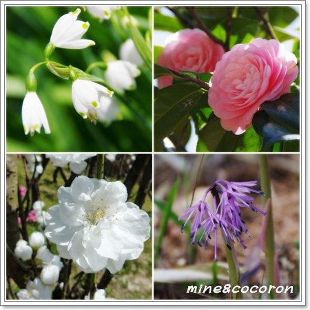 福知山城と三段池公園_a0053987_109398.jpg