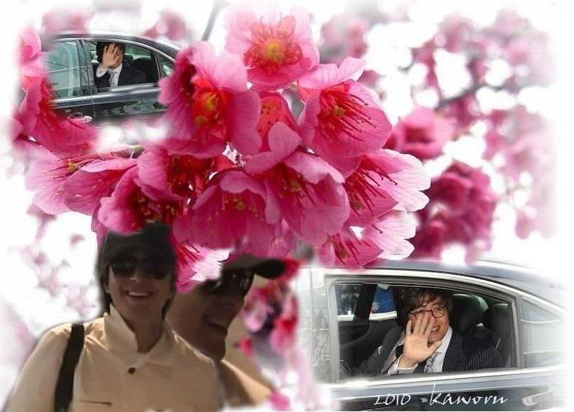 ヨン様は、富士に~!_d0060693_20114031.jpg