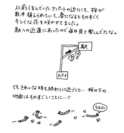 f0036603_1635526.jpg