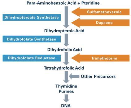 ST合剤はワーファリン服用者において消化管出血のリスクを上昇させる_e0156318_16305856.jpg