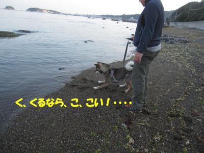 f0143123_20115529.jpg