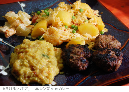 とろけるケバブ_melt-in-the-mouth kebab_a0080964_152459.jpg