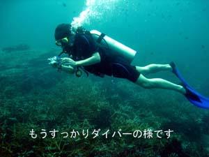 初の一人旅&体験ダイビング♪_f0144385_0581036.jpg