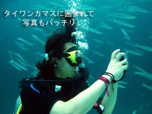 初の一人旅&体験ダイビング♪_f0144385_0591264.jpg