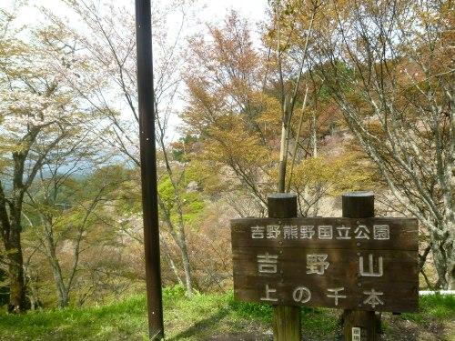 吉野まで~♪_d0078486_451220.jpg