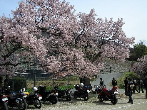 2010年4月18日 高遠 桜ツーリング<2010-NO3>  _d0038712_0504066.jpg