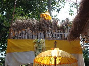 ロラスの儀式 ペタの中では_a0120328_1411944.jpg