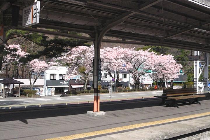 初夏と真冬 桜前線停滞中_d0012134_1422242.jpg
