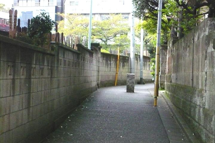 初夏と真冬 桜前線停滞中_d0012134_17131946.jpg