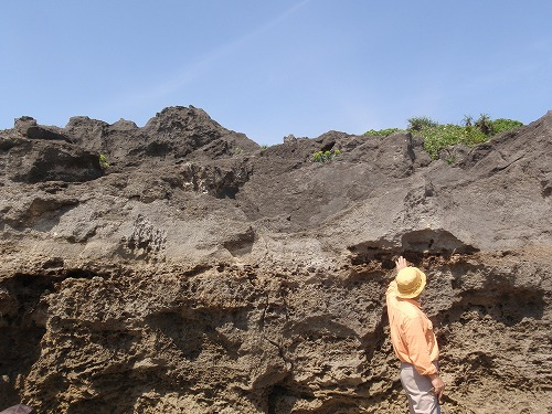 具志頭海岸の地質見学_c0180460_1065615.jpg