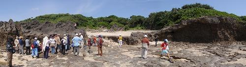 具志頭海岸の地質見学_c0180460_1073612.jpg