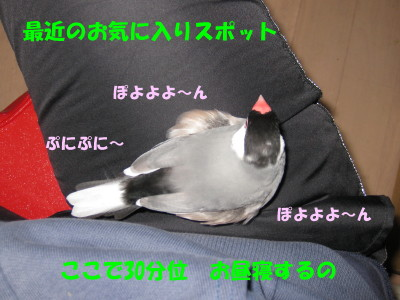 b0158061_20273751.jpg