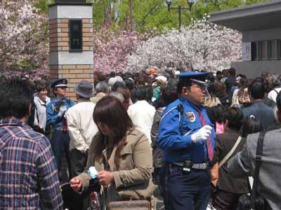 今年の「造幣局桜の通り抜け」♪_d0136282_19461728.jpg