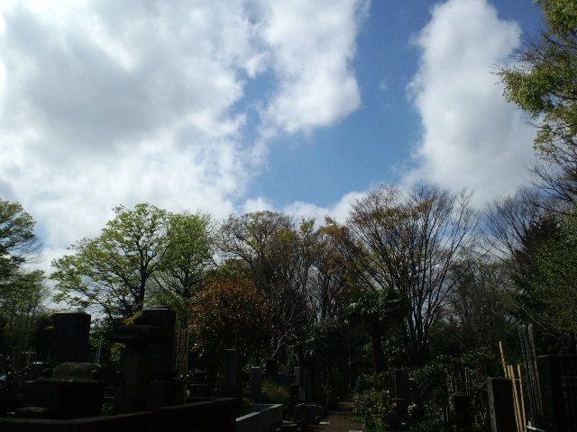 2010/04/22  せと_f0035084_2354953.jpg