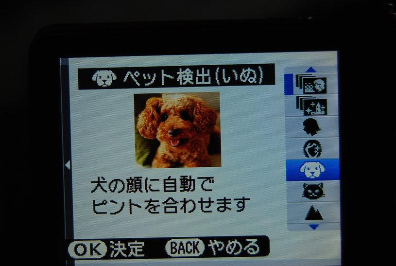 f0101201_1627968.jpg