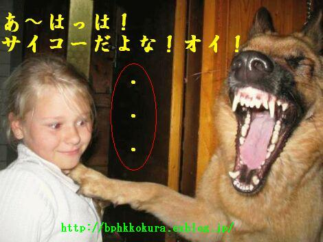 f0056935_2012335.jpg