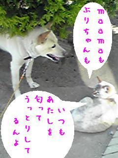 b0151748_124345.jpg
