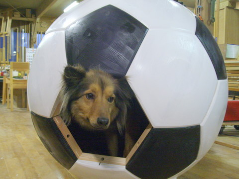 サッカーボールの家 その3_f0206159_18503580.jpg