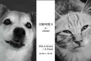 犬猫時間 3_c0130172_2252316.jpg