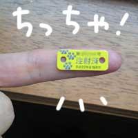 b0057675_1048444.jpg