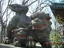 浦安の狛犬_d0065324_9581911.jpg