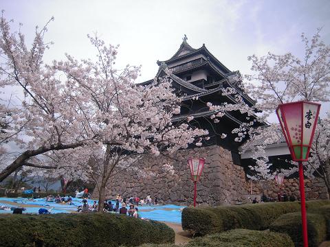 松江の桜と城と ~西国桜旅④_b0050651_21424237.jpg