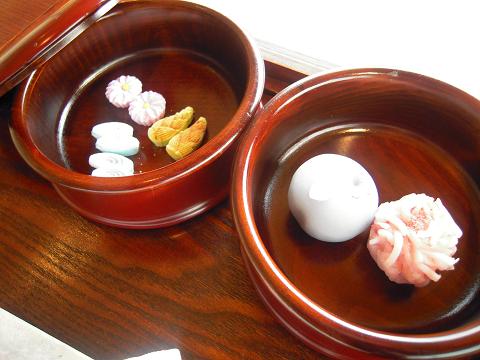 松江の桜と城と ~西国桜旅④_b0050651_21433654.jpg