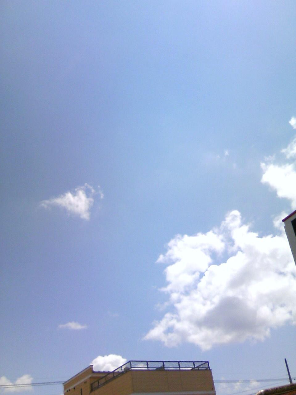 a sunny day_c0215352_14294026.jpg