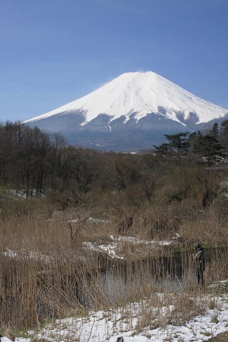 忍野の春_b0116600_22552079.jpg