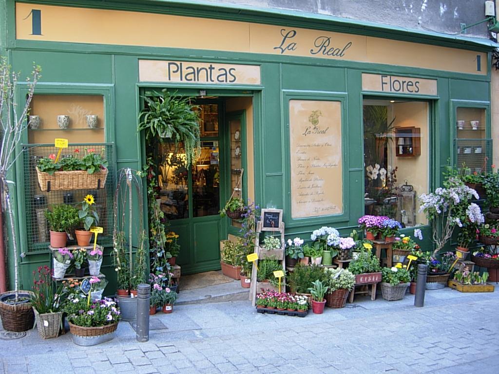マドリードの花屋さん_c0213220_8163284.jpg