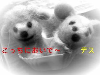 f0148927_10254817.jpg