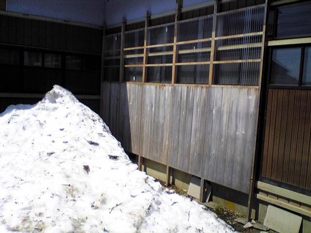 雪囲い_f0081443_19452967.jpg