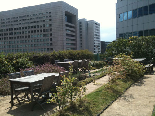 midorium garden !!_b0188548_025960.jpg