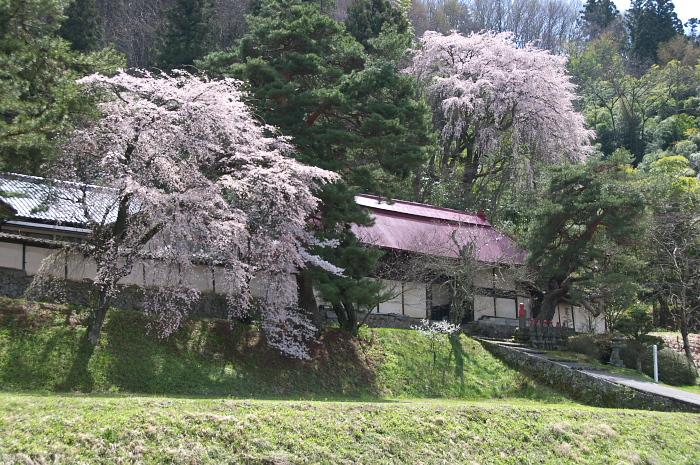桜仙峡・池田町(陸郷)_e0056449_19294855.jpg