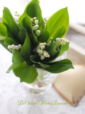 お花のフォトレッスン「コンパクトデジカメ」編 レポート_e0158653_15294370.jpg