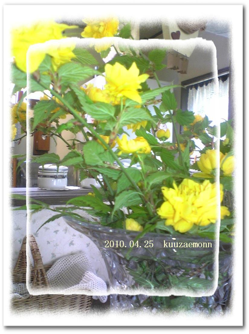 f0184055_13565452.jpg