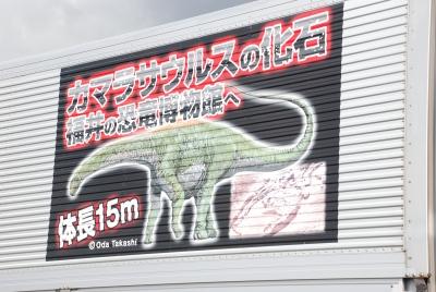いよいよカマラサウルスが!!!_f0229508_1317256.jpg