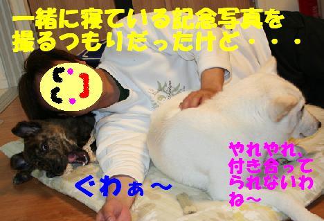 f0121712_1847205.jpg