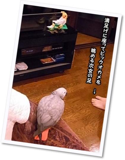 c0133013_2011513.jpg