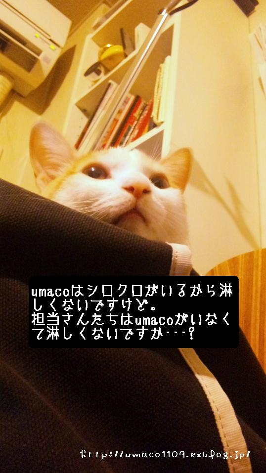 a0165526_22143429.jpg