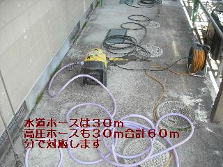 f0031037_2056530.jpg